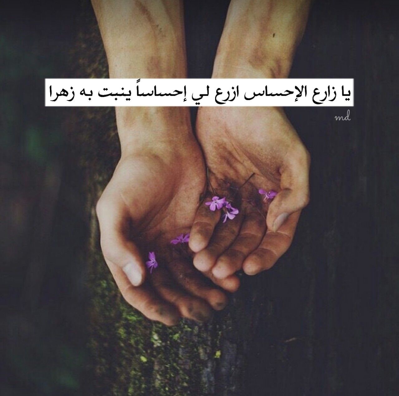 Pin By Norhan Kamal On Stuff To Buy Holding Hands Hands