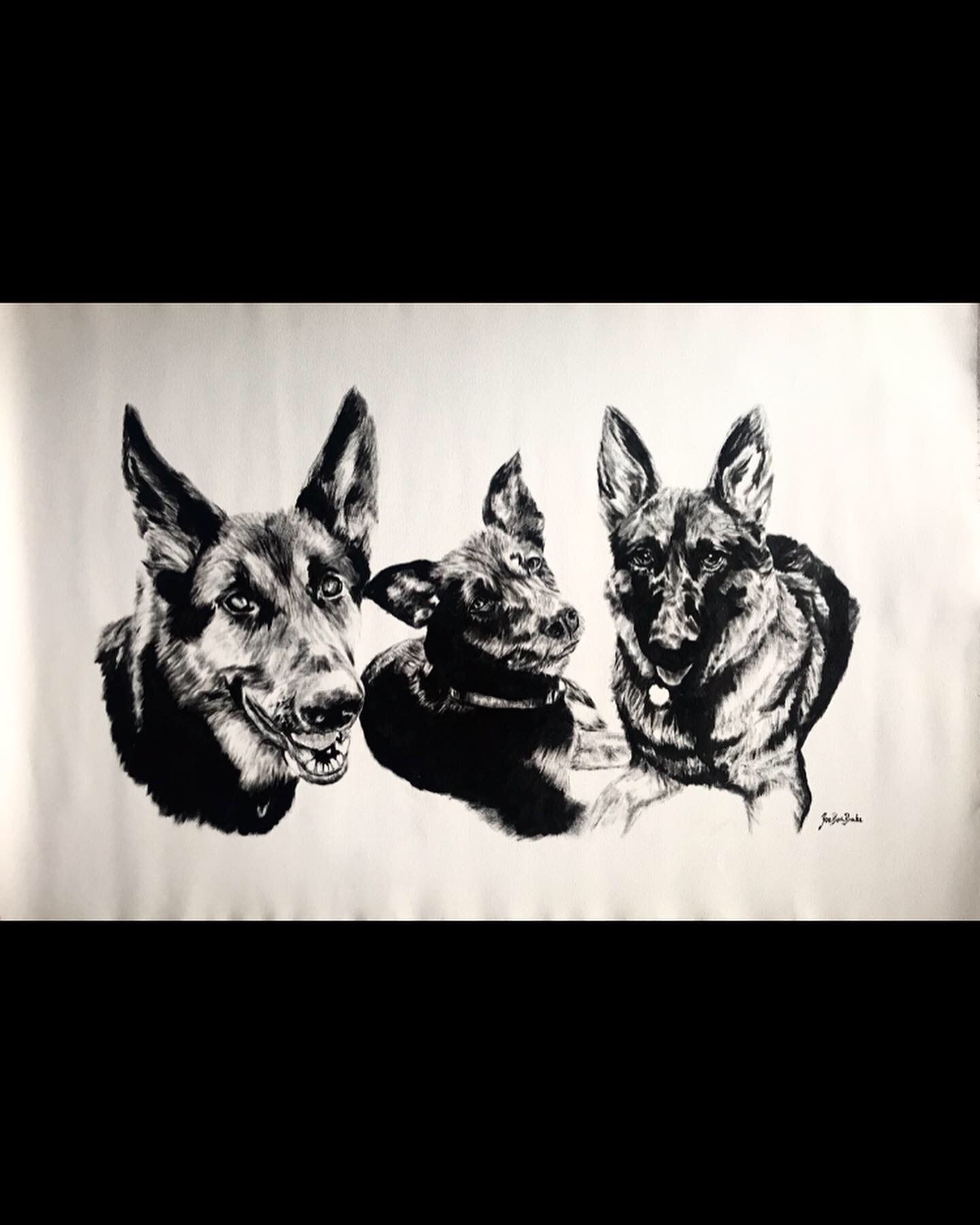 This was a special commission. None of these three dogs