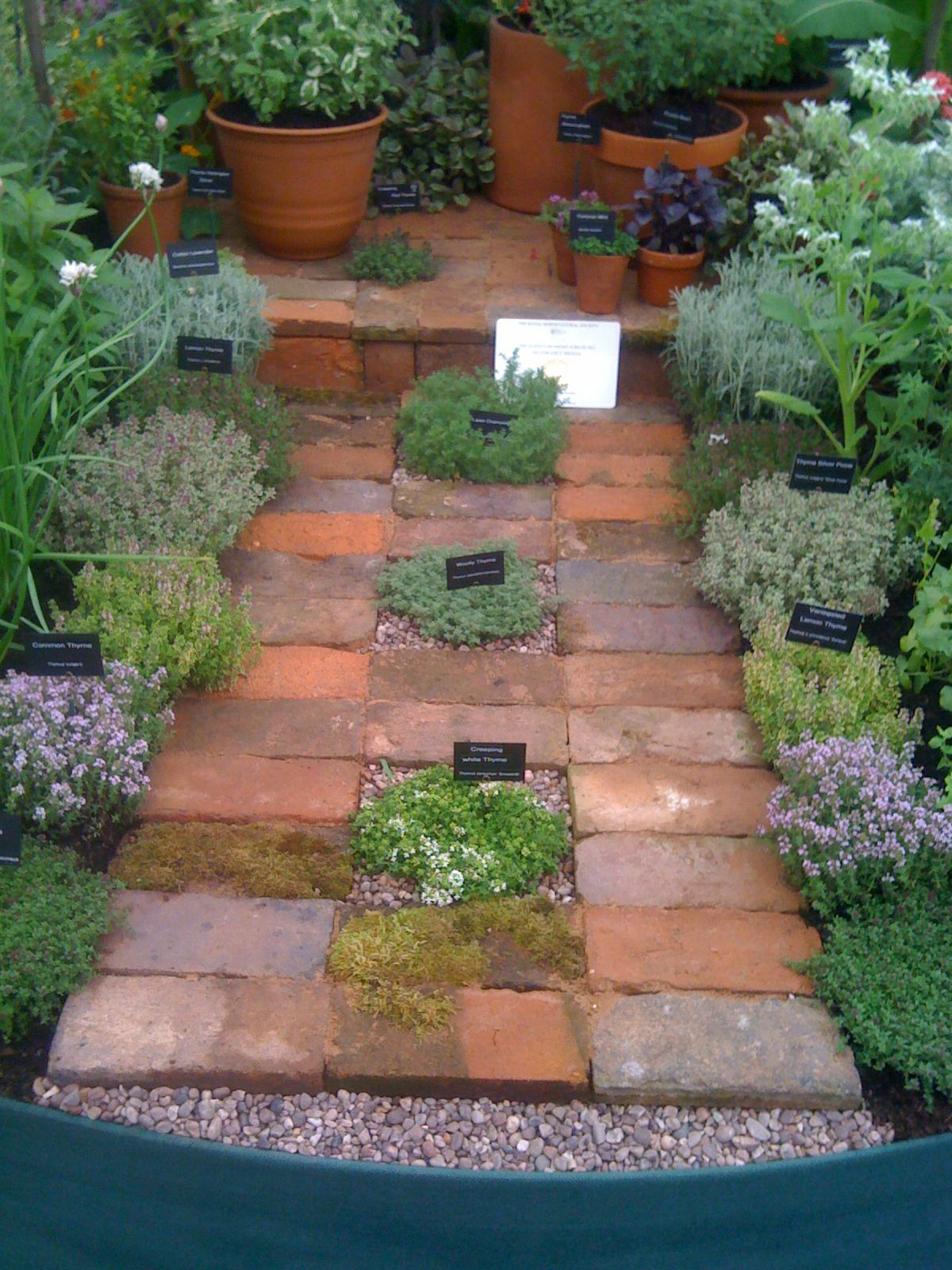 84b2f3c82ca54525fe5ca85fa28f968e - What Zone Is Thunder Bay For Gardening