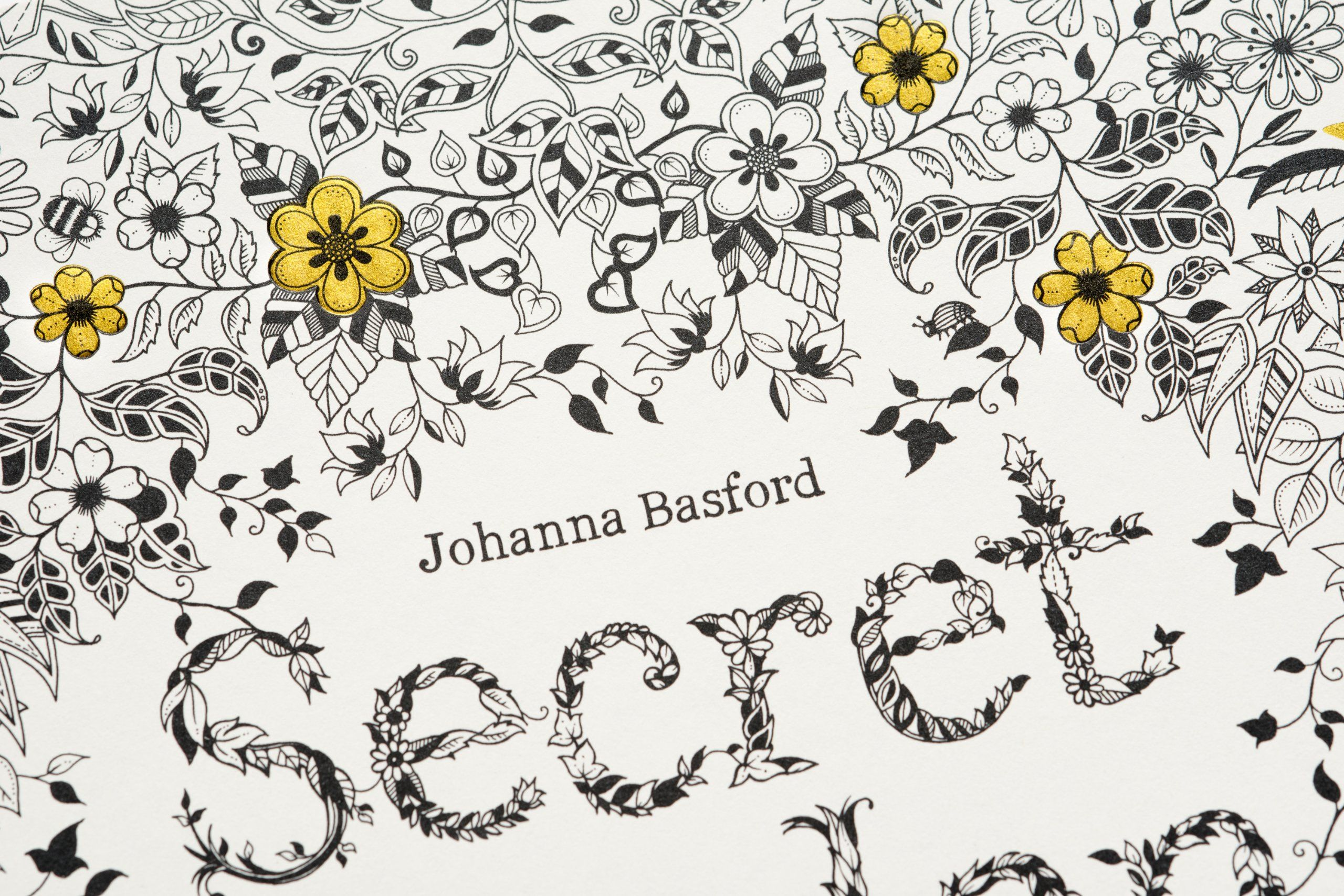 A Coloring Book For Adults Secret Garden An Inky Treasure Hunt And
