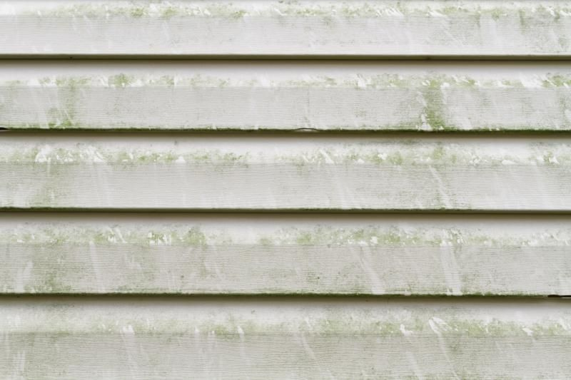 How To Remove Mold From Vinyl Siding Cleaning Vinyl