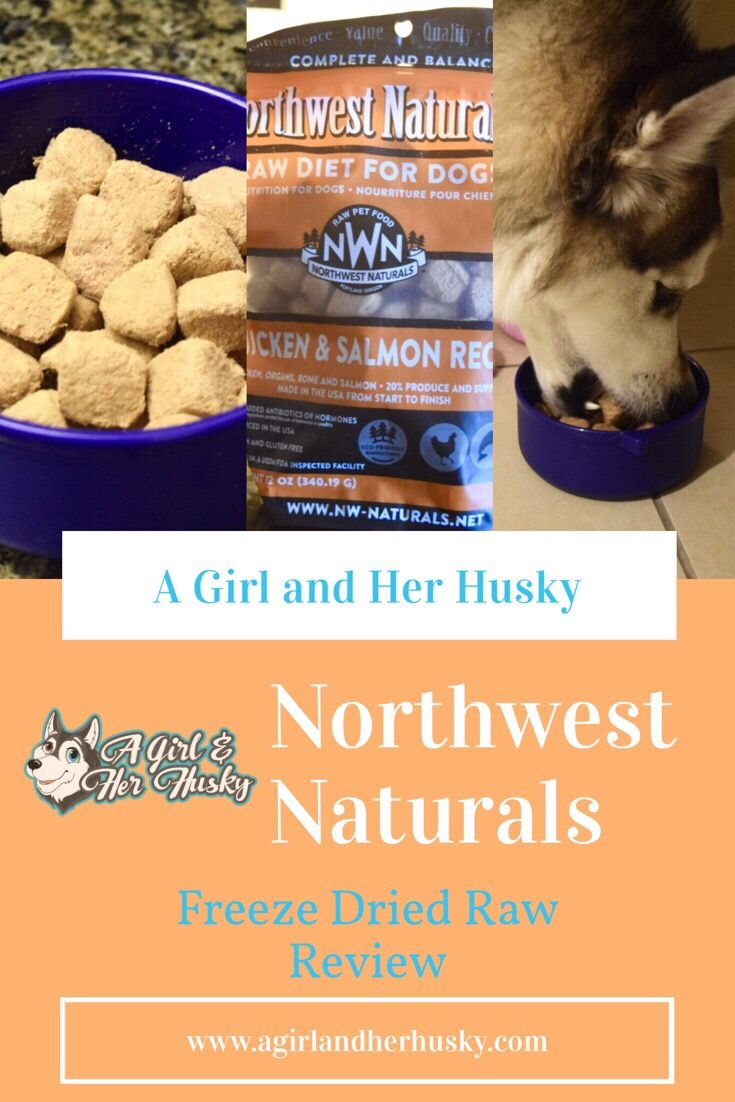Northwest Naturals Freeze Dried Raw Review Dog food
