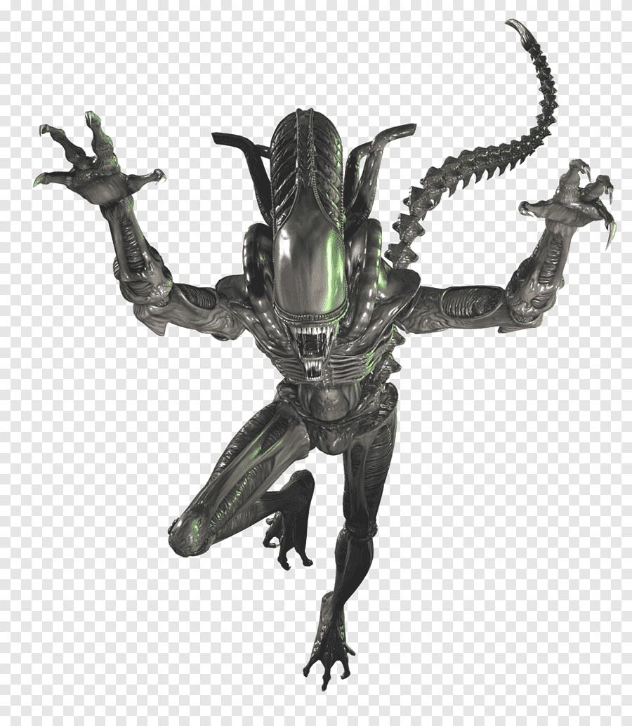 Xenomorph Illustration Alien Isolation Alien Vs Predator National Entertainment Collectibles Association A Xenomorph Alien Vs Sideshow Collectibles Statues
