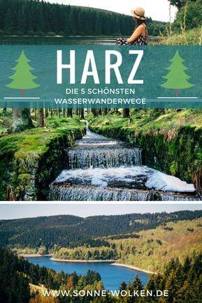 Las rutas de senderismo más bellas de la plataforma de agua de Oberharz