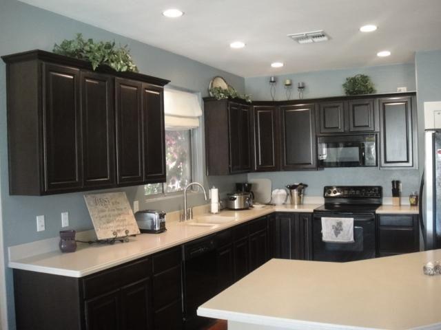 chocolate kitchen cabinets sink lights dark