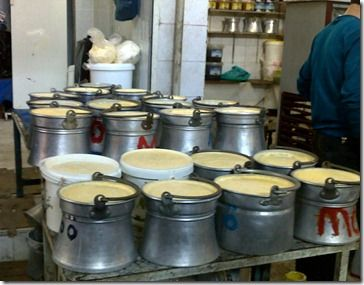 """THIS is """"yoğurt"""" (the old-fashioned way).nice blog!How to Make Yoğurt in 6 Easy Steps, Yuvacali-style"""