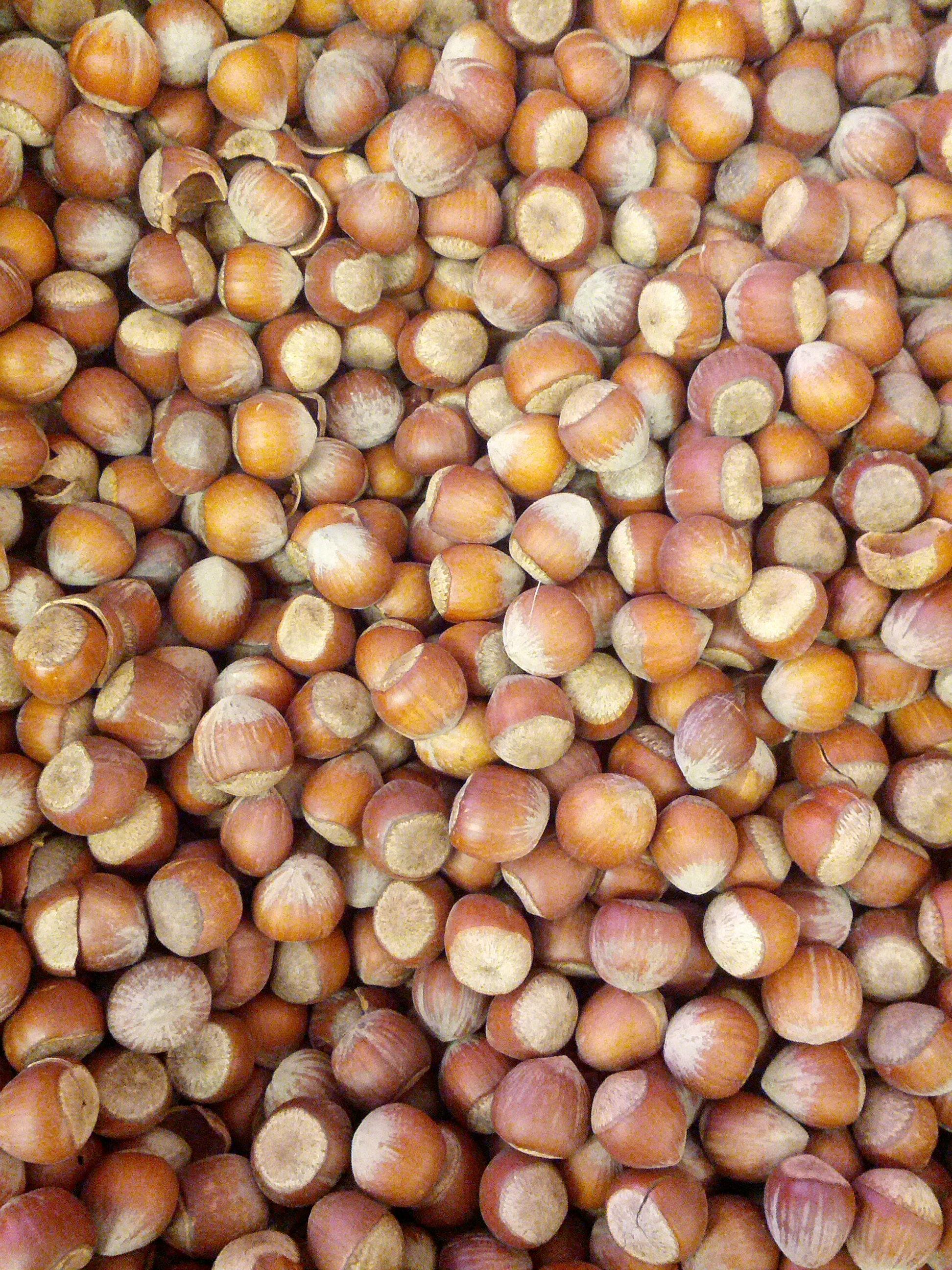 El aceite vegetal de avellana tiene propiedades reafirmantes y antioxidantes. http://goo.gl/Os0dXO