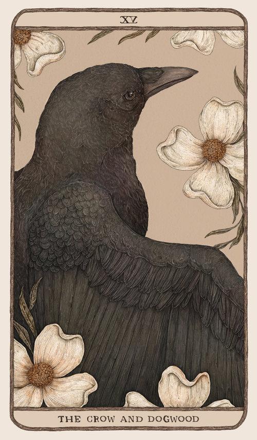 林地看守者—杰西卡·魯(Jessica Roux)插畫 in 2020 | Tarot art. Art inspiration. Framed art prints