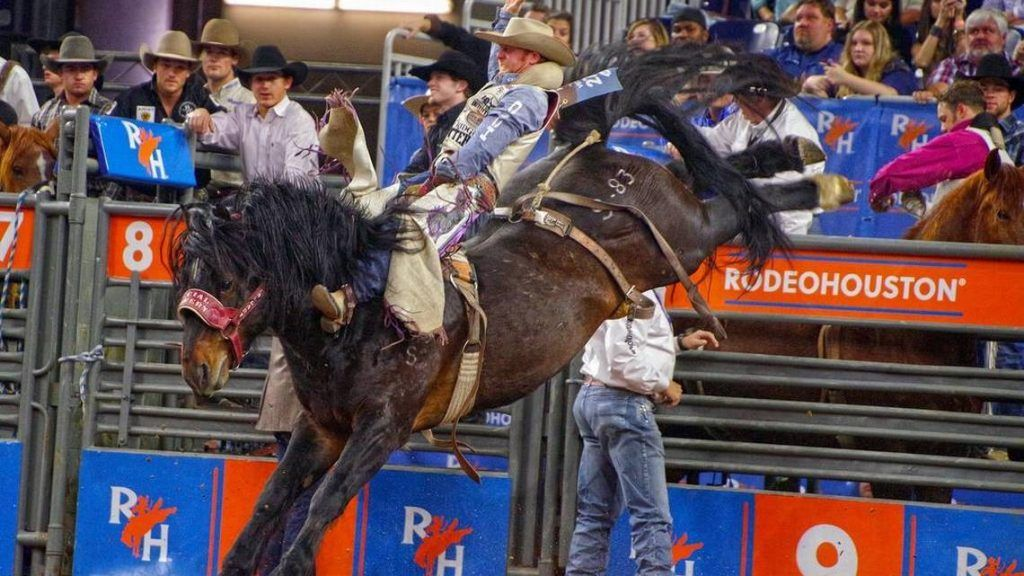 NFR 2018 Live Streaming, Free, Watch, Wrangler, Online