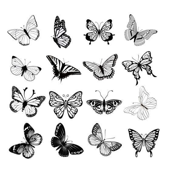 Photo of Little Butterflies Tattoo Design, #blacktattoonature #Design #little #butterflies #tat …