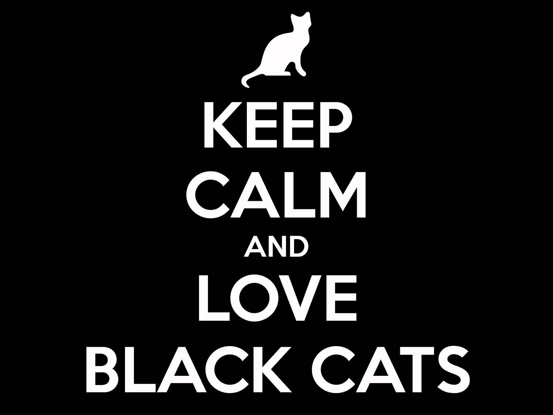 Share if you find it terrific! #kittens #pet #cats