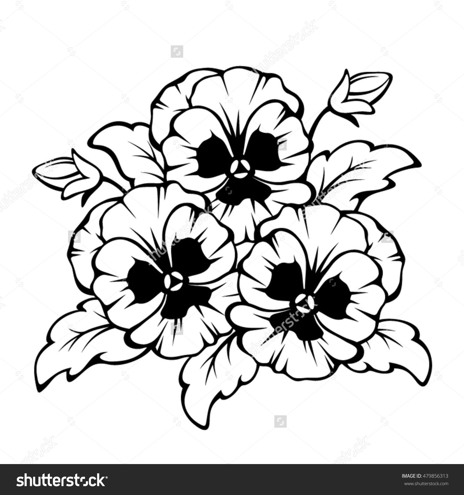 Vector Black Contour Of Pansy Flowers Isolated On A White