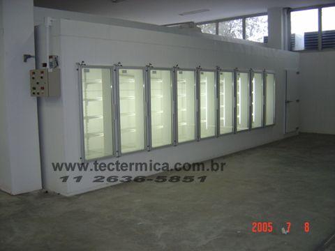 Expositor refrigerado - congelados