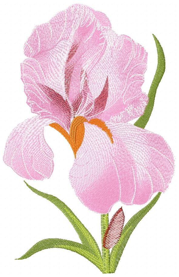 Iris Flower Free Embroidery Flowers Free Machine Embroidery
