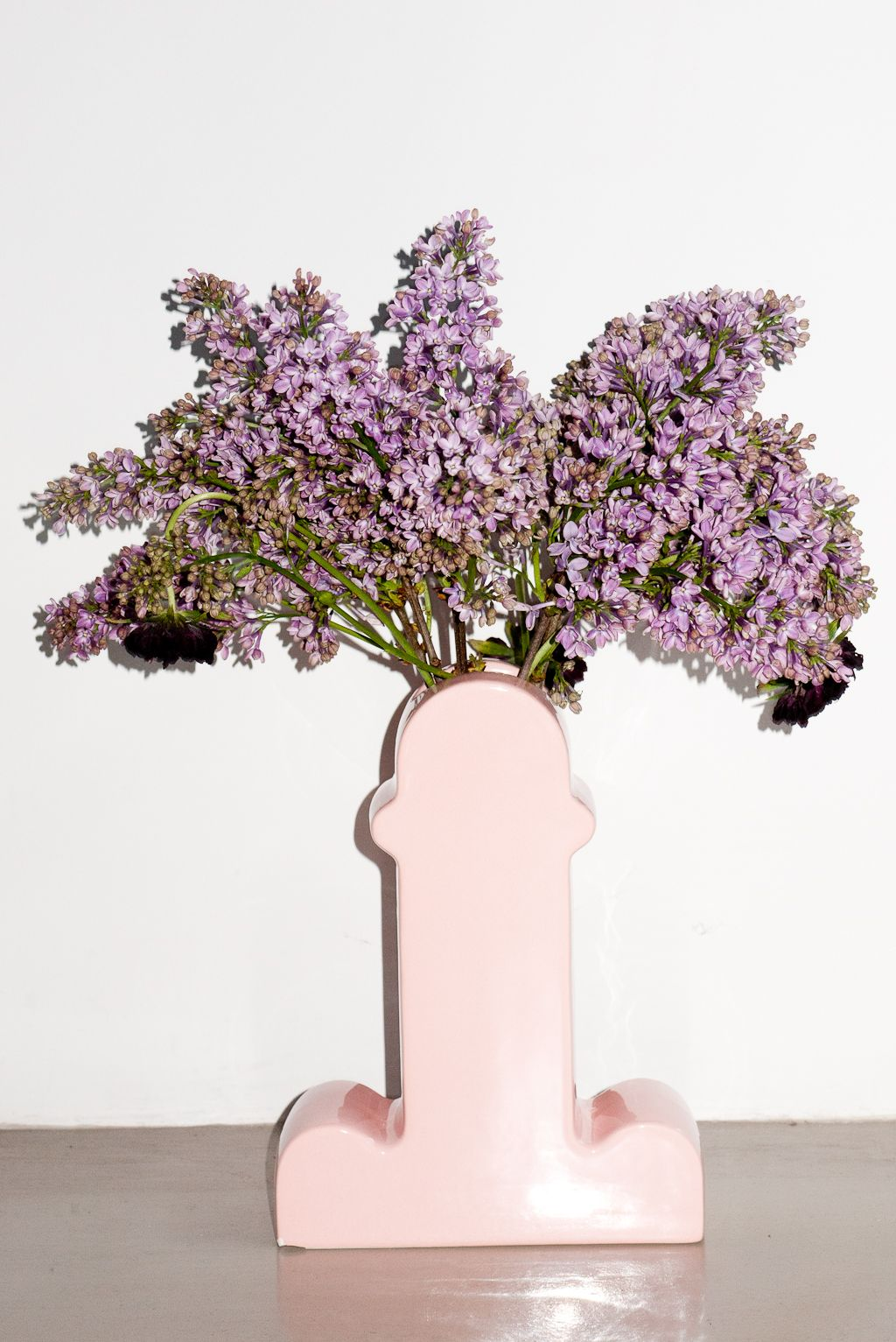 penis - vase © Terry Richardson | FLOWERS, PLANTS... | Pinterest for Ettore Sottsass Shiva Vase  588gtk