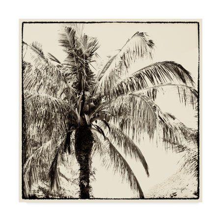 Trademark Fine Art Palm Tree Sepia Iii Canvas Art By Debra Van Swearingen Walmart Com In 2020 Landscape Canvas Fine Art Landscape Palm Trees Painting