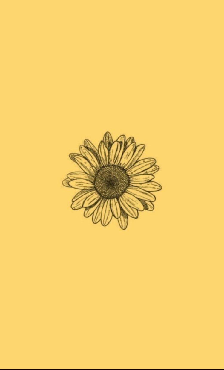 Yellow Flower Wallpaper Yellow Aesthetic Pastel Iphone Wallpaper Yellow Sunflower Wallpaper