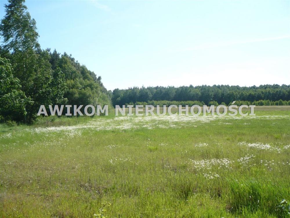 Dzialka Inna Na Sprzedaz Joachimow Mogily 3 367m2 Foto 1 Natural Landmarks Landmarks Outdoor