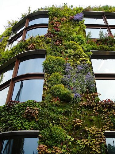Living building.  This is how the city of the future should look. Passive cooling, cleaning the air, possibly plant edibles on the roof top...