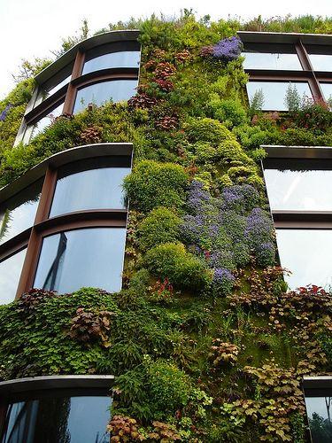 Fa ade d immeuble en mur v g tal depuis sa cr ation dans les ann es 1990 par le botaniste et - Immeuble vegetal ...
