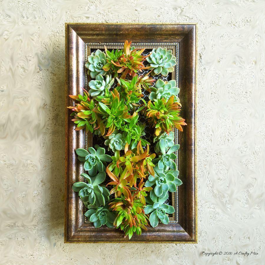 How to frame a vertical garden gardens plants and garden ideas