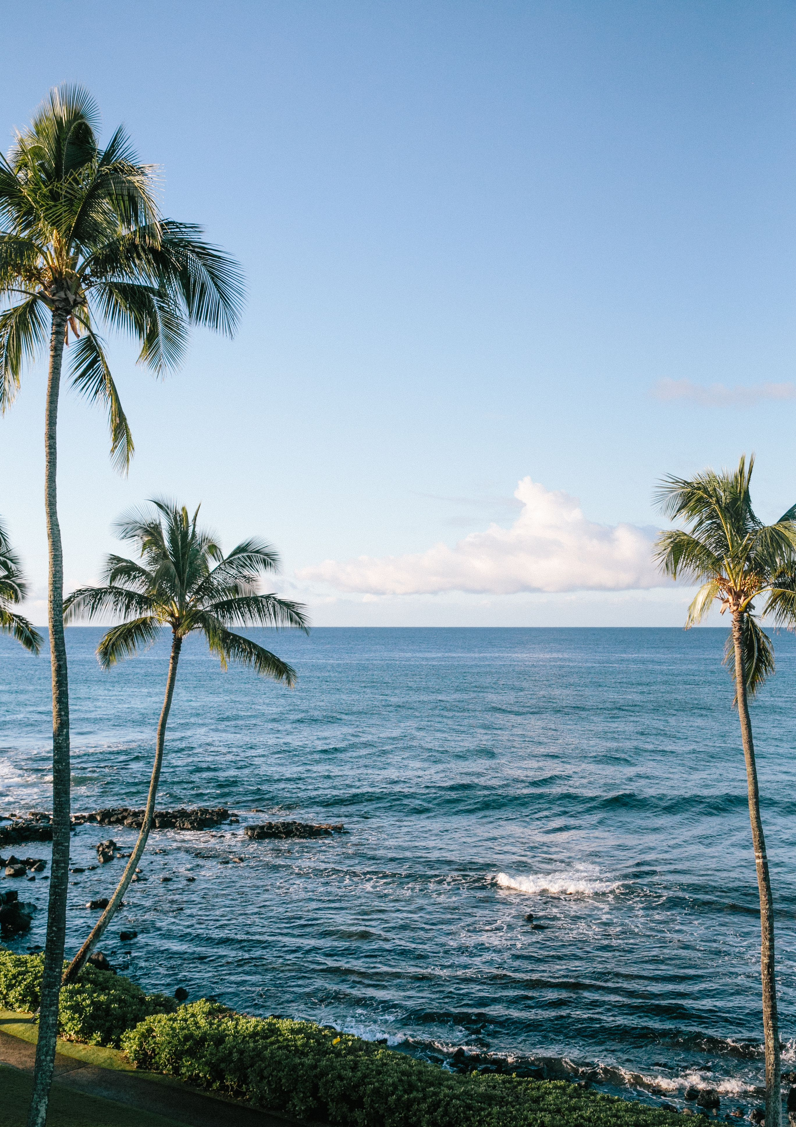 Hawaiian Travel Blogger's Travel Guide To Kauai  Best places to vacation, Hawaii travel guide