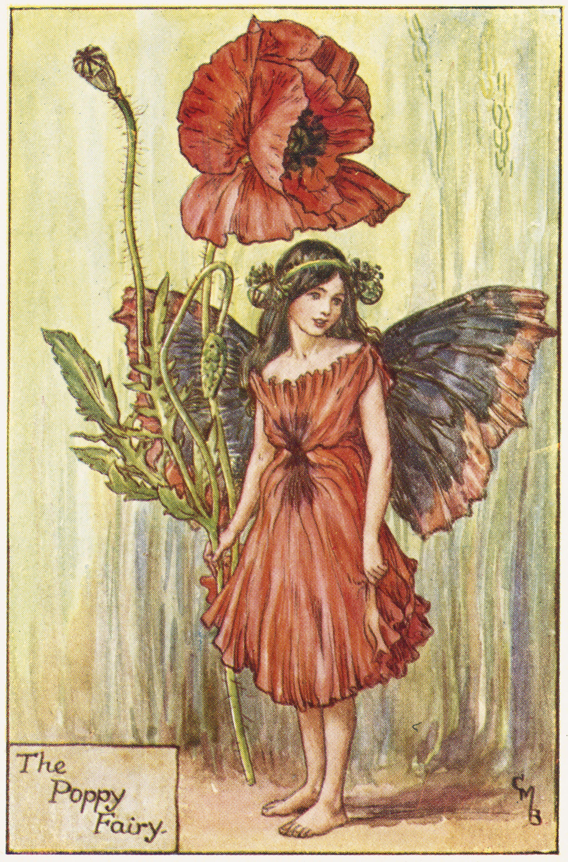 Pin By Michelle Yotty On Flower Girl Pinterest Flower Fairies