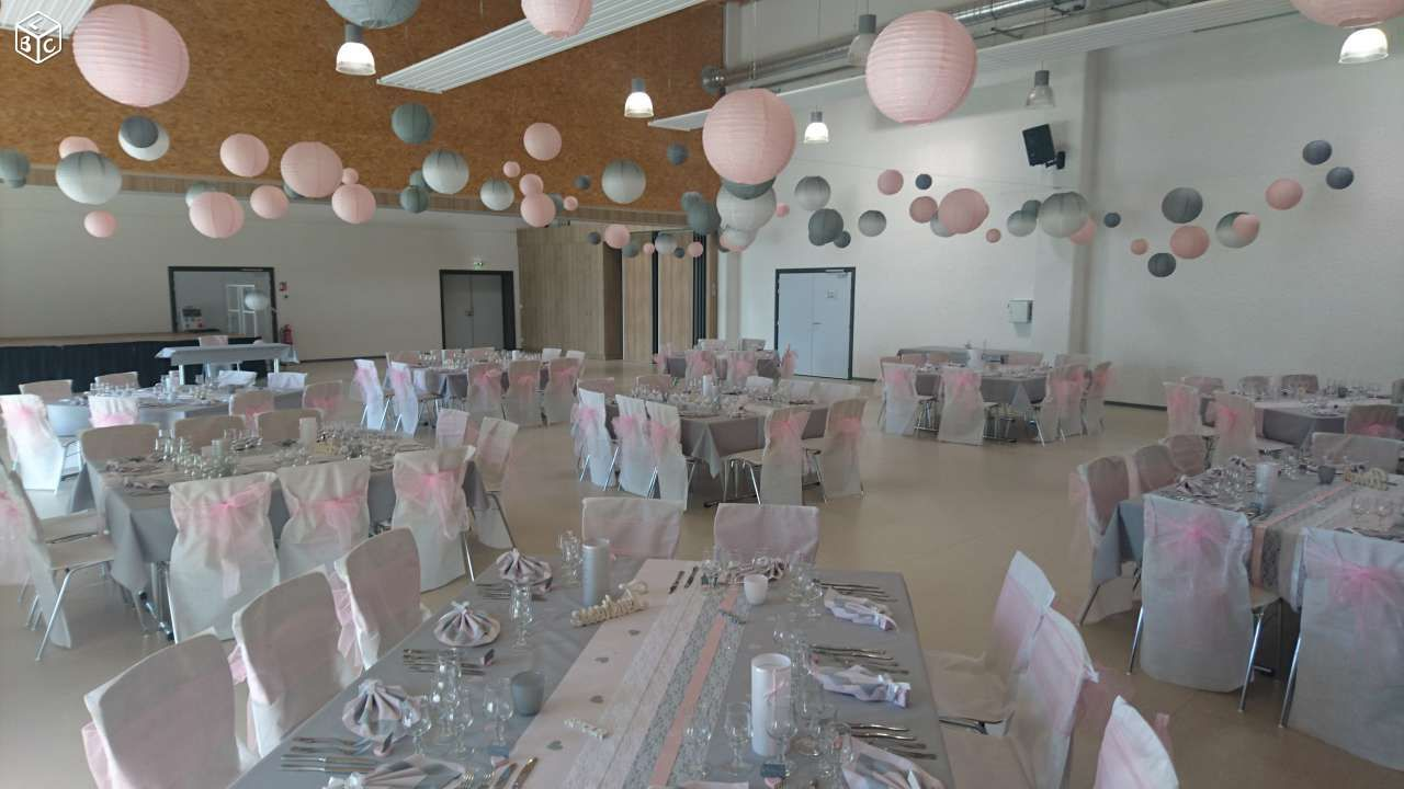 Decoration Mariage Rose Blanc Gris Decoration Moselle Leboncoin Fr