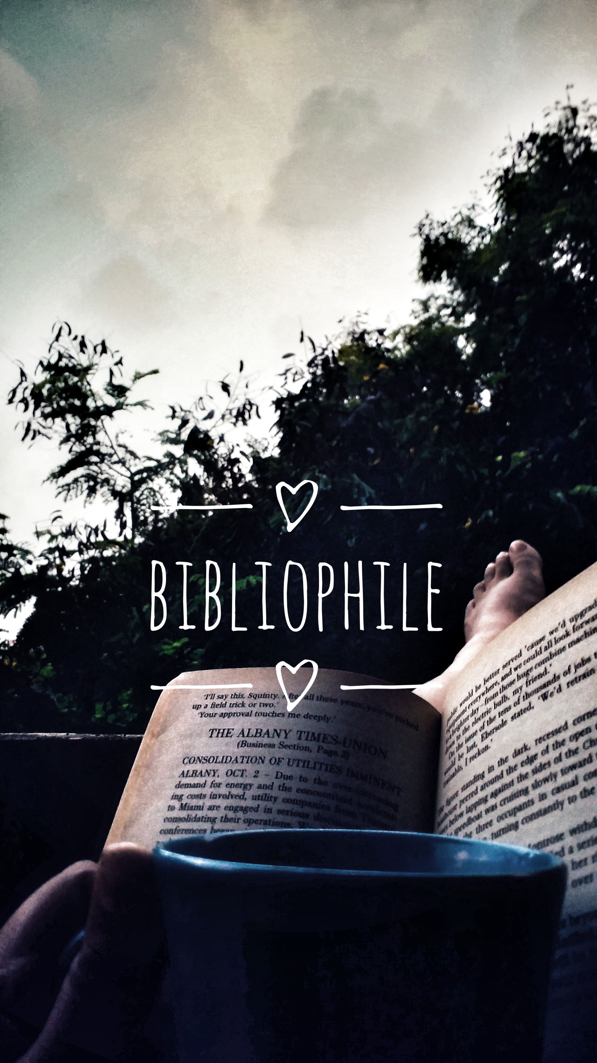 Bibliophile Quotes For Book Lovers Bookworm Quotes Book Aesthetic