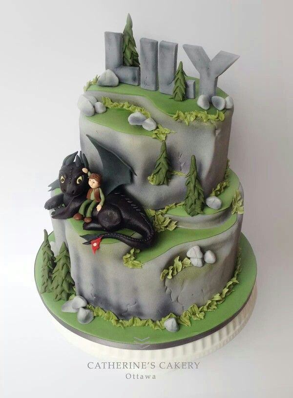 Awe Inspiring Catherines Cakery How To Train Your Dragon Cake With Images Personalised Birthday Cards Veneteletsinfo