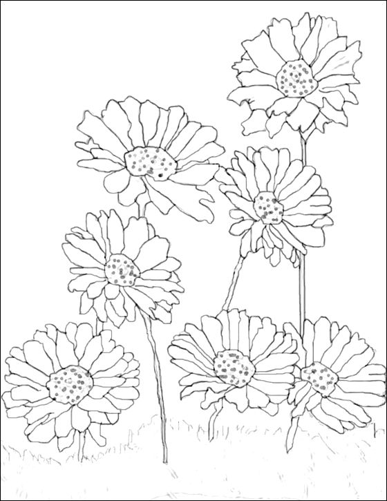Coloring page Gerbera | Coloring pages | Crafting | Pinterest ...