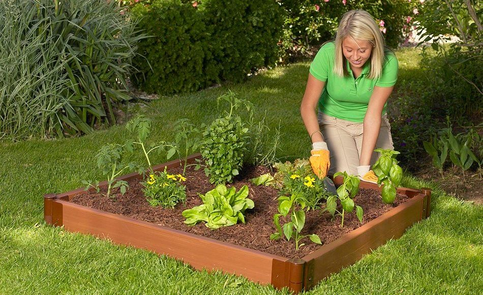 84c43cad92d471db1022ede8e100d18d - Square Foot Gardening Depth Of Raised Bed