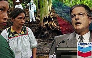 Hilfeschrei aus dem Regenwald - wieder mal plant ein Ölkonzern eine Sauerei  Klick hier: http://direkteaktion.over-blog.de/article-hilfeschrei-aus-dem-regenwald-wieder-mal-plant-ein-olkonzerne-eine-sauerei-114899030.html