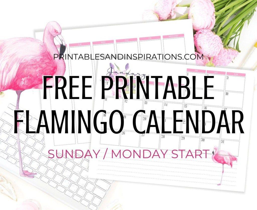 2020 2021 Flamingo Calendar + Weekly Planner Free