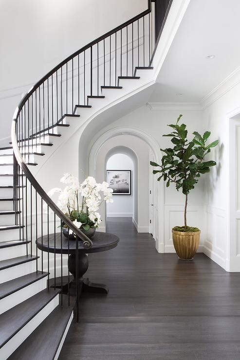 chic classic foyer features a curved staircase wall filled with a rh pinterest com