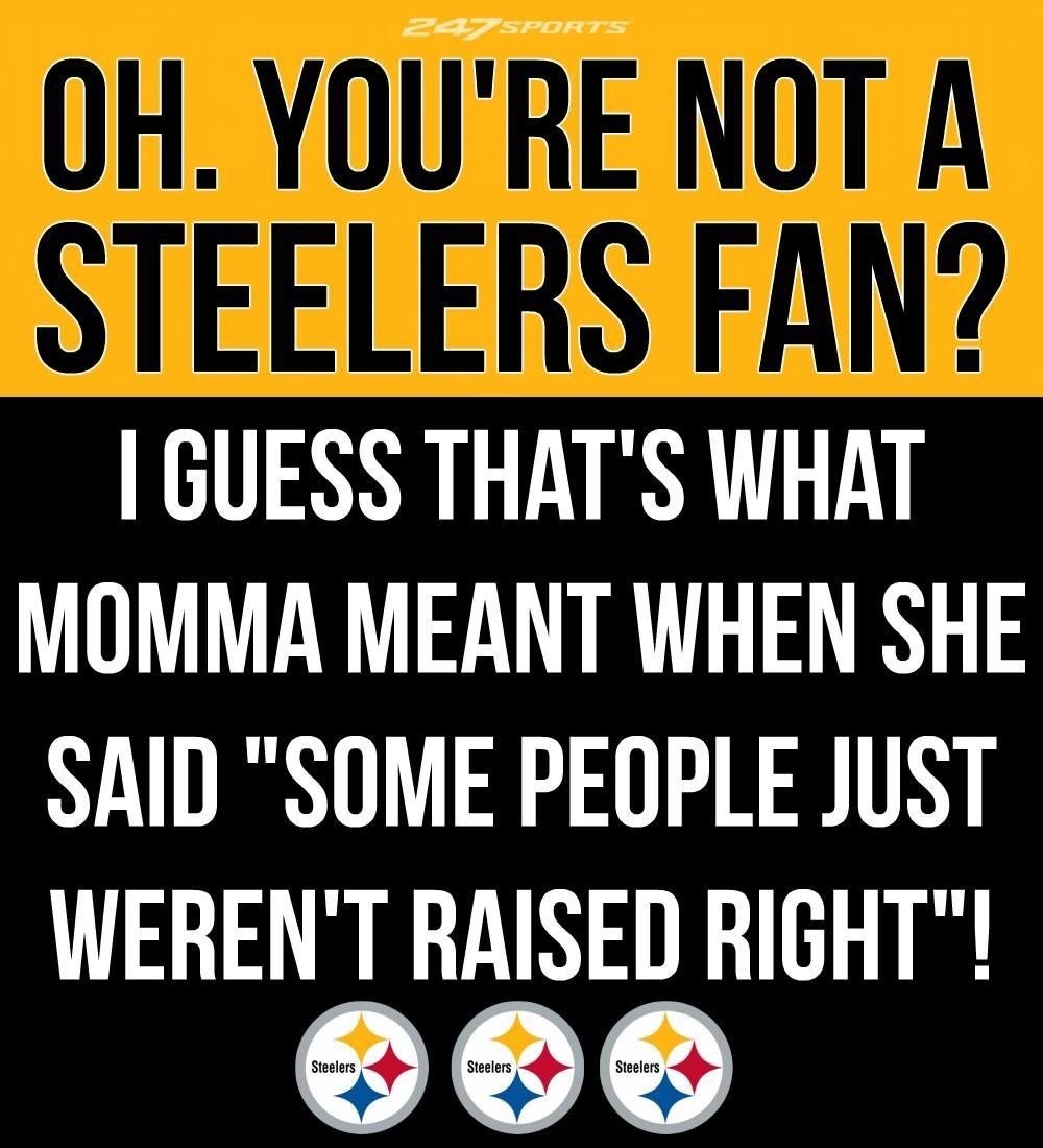 Steelers Fan Steelers fan, Steelers, Nfl funny