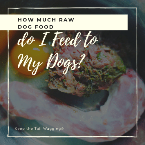 How Much Raw Do I Feed to My Dogs? | Raw dog food diet ...