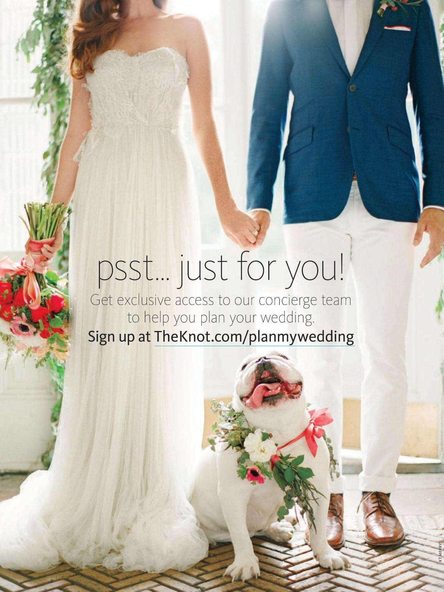 The Knot Wedding planning, Wedding pets, Wedding