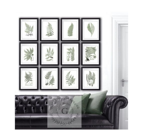 Sage Green Wall Decor Ferns Art Prints Set By Gnositurearchive