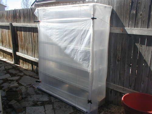 Easy Greenhouse (Cold Box). A cold box is used to start seeds and to help force seeds to germinate before they are in season