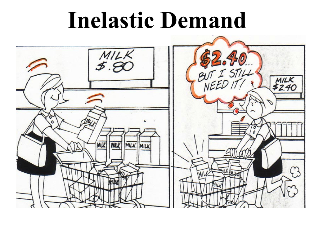 economics elasticity - Google Search | economics | Pinterest ...