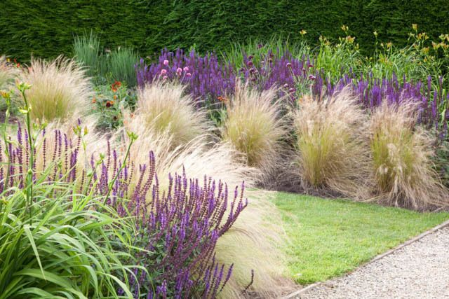 Garden ideas border ideas perennial planting perennial for Tall grass border