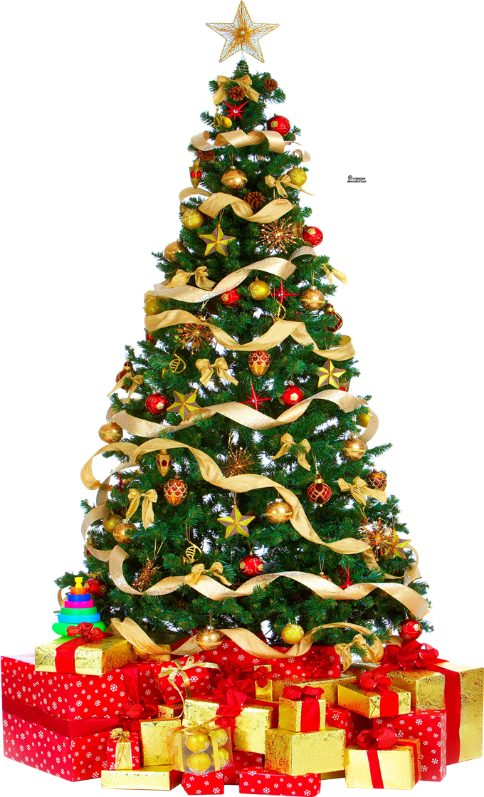 Christmas Tree Png Clipart Christmas Png Image Clipart Holiday Party Invite Wording Holiday Party Invitations Christmas Party Invitation Wording