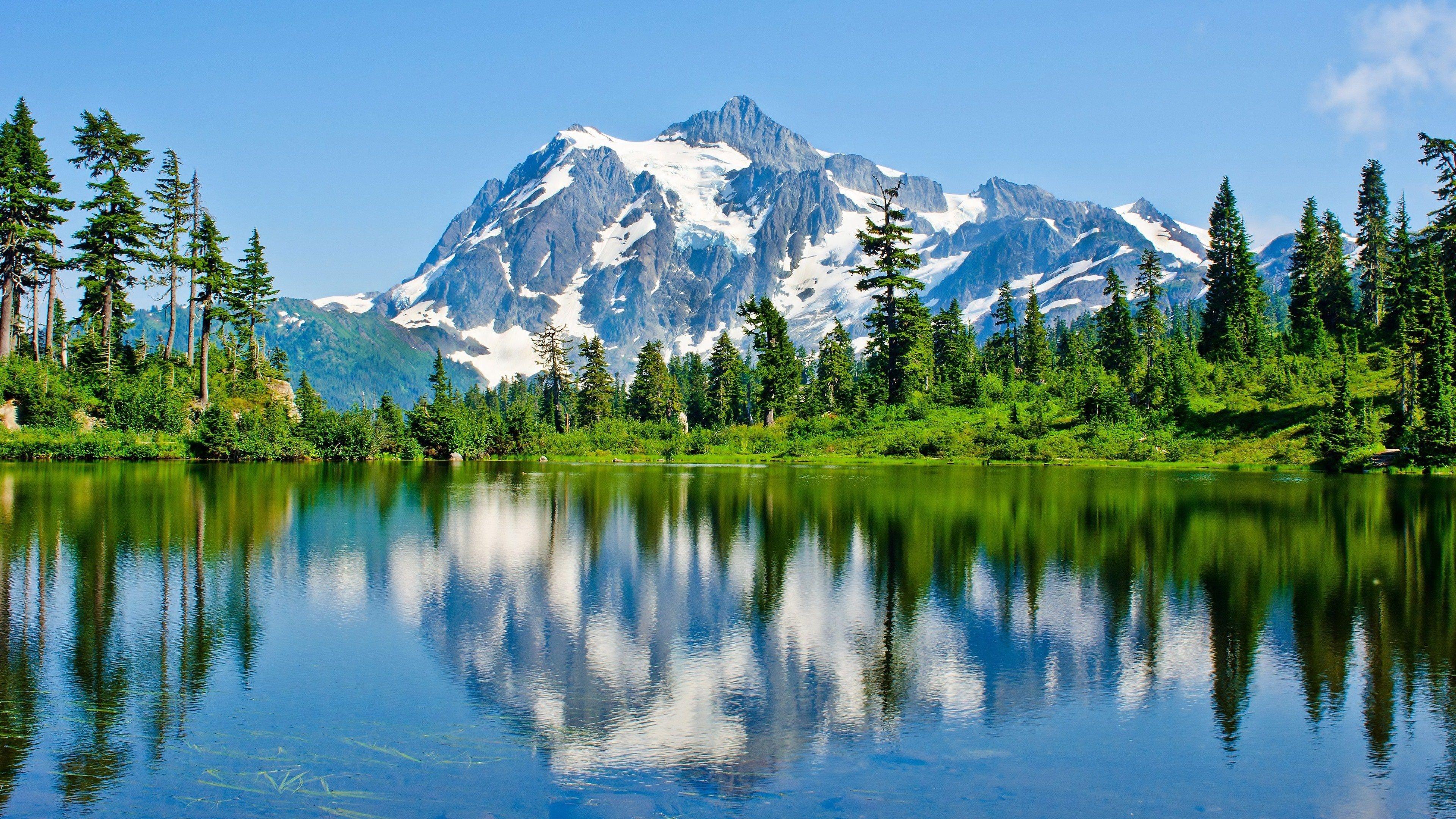Mount Baker Forest Lake 4k Ultra Hd Wallpaper Beautiful Scenery Pictures Landscape Wallpaper Nature Wallpaper