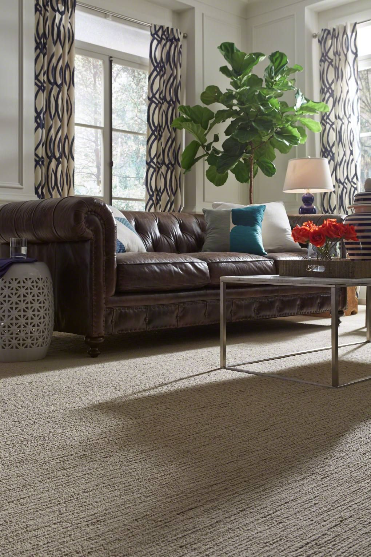 Linenweave Soft Fleece Shaw Carpet Living Room Carpet Shaw