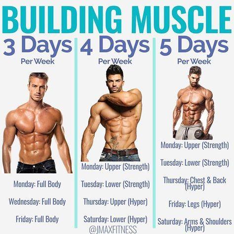 BUILDING MUSCLE By Jmaxfitness