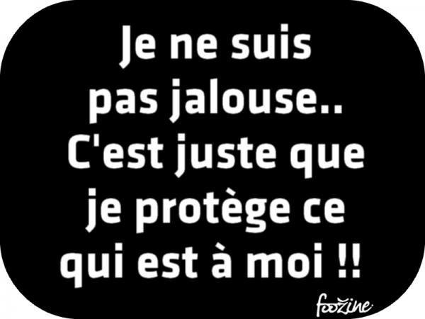 Je Ne Suis Pas Jalouse Citation Jalousie Citation Et