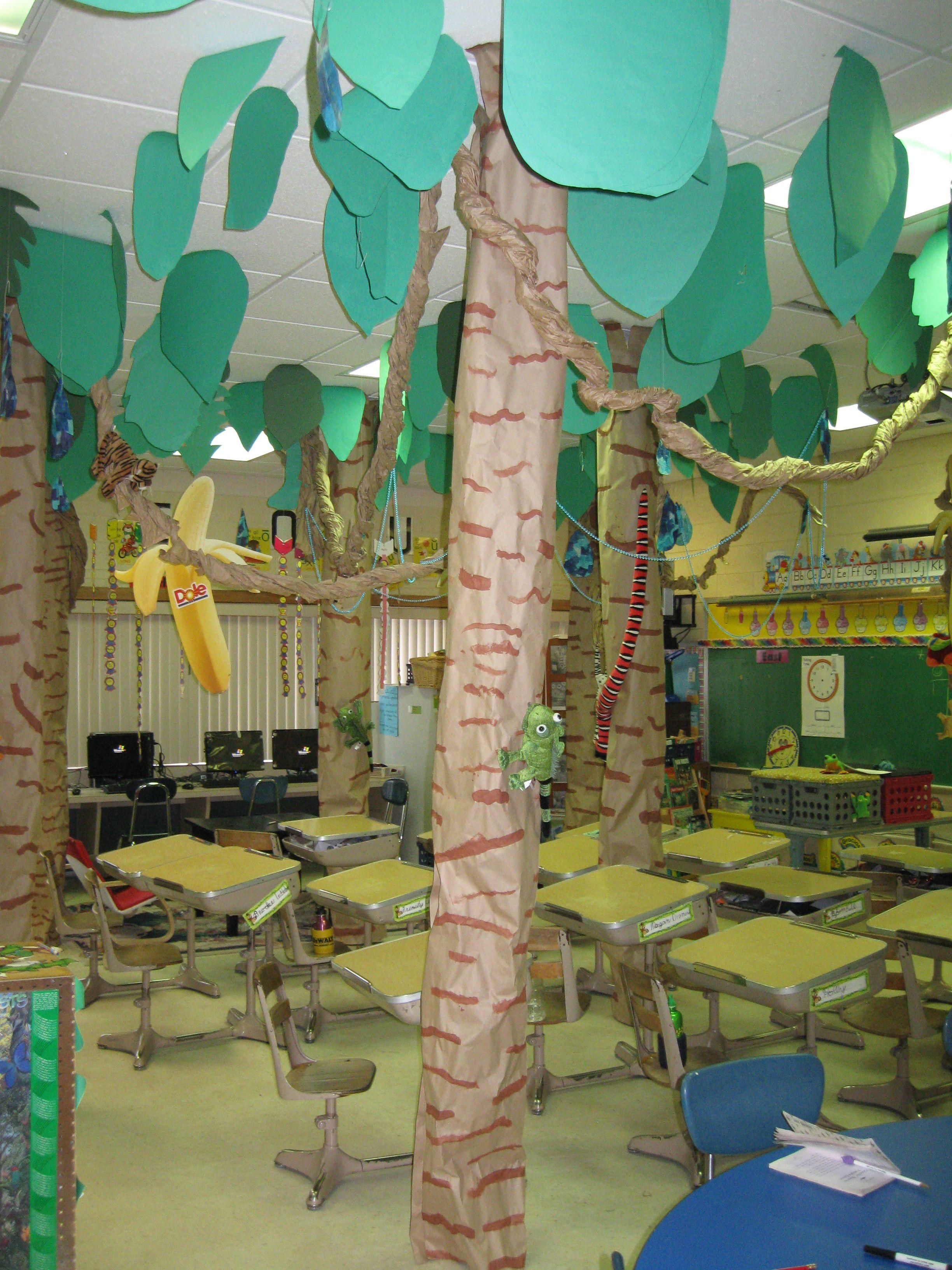 Rainforest Classroom