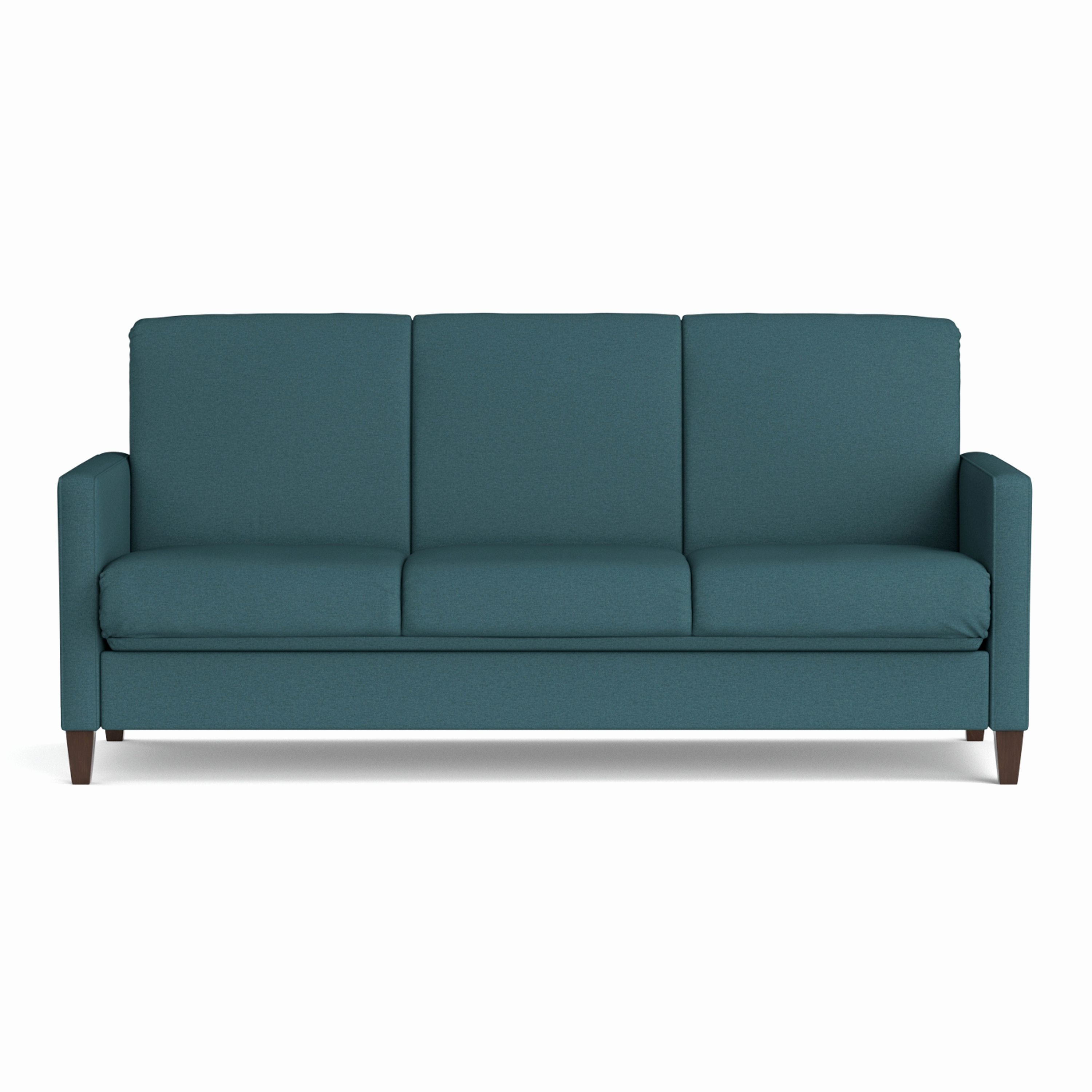 Sears Living Room Couches Pics Of Rooms With Fireplaces Luxury Sleeper Sofa Futon Image Lovely Bed Sets At