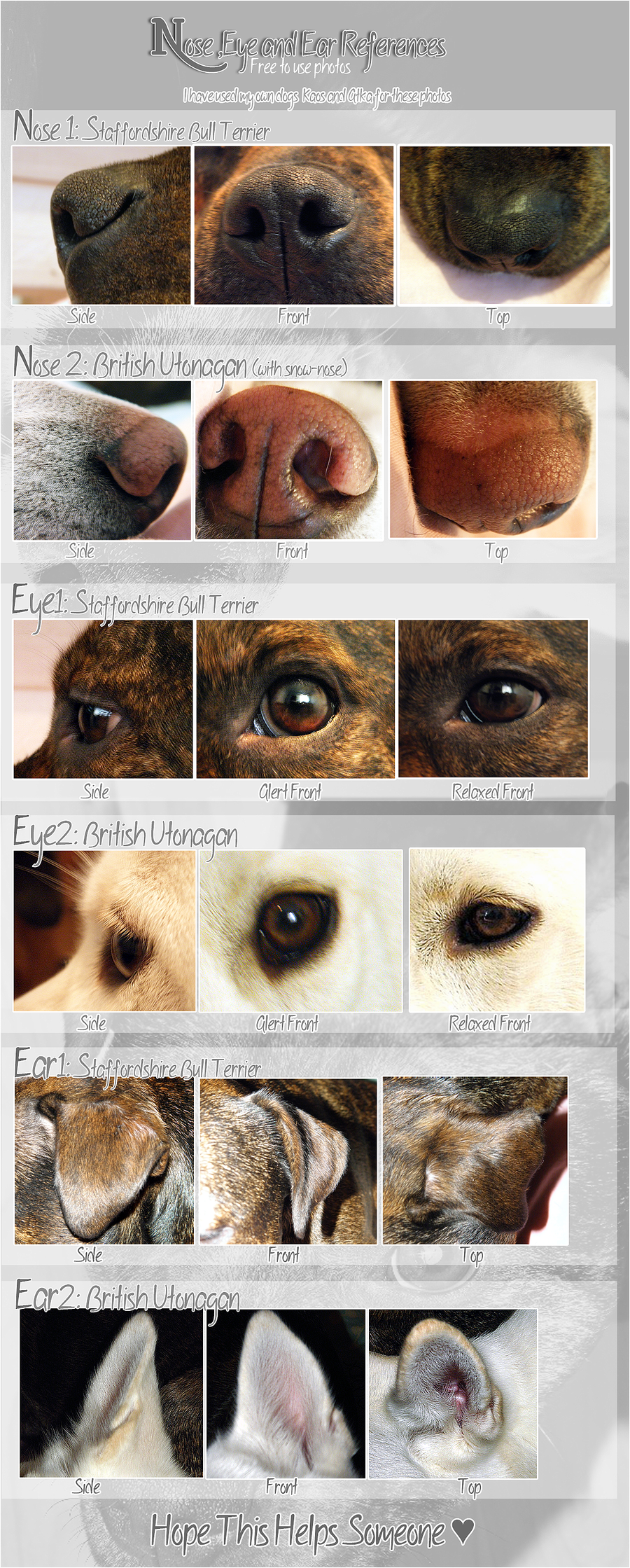 Fursuit Help - Nose ,eyes,ears | Art | Pinterest | Fursuit, Animal ...